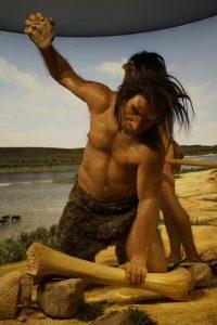 Anbieter der Steinzeit Diät