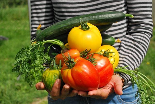 Gurke, Tomate, Paprika alles unverarbeitet in der Paleo Diät